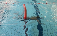 diplomazwemmen - 26