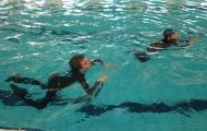 Diplomazwemmen-03.JPG