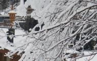 skikamp-64.jpg